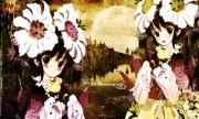 Okama Wallpaper