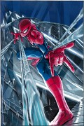 Spiderman (Series)