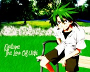 The Law of Ueki Wallpaper