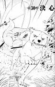 Ginga: Nagareboshi Gin
