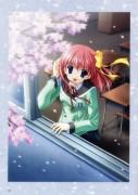 Sakura ~Setsugekka~