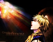 Valkyrie Profile Wallpaper
