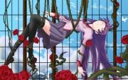 Bakemonogatari Wallpaper