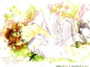 Gakuen Heaven Wallpaper