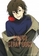 Bungou Stray Dogs