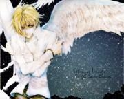 Angel Sanctuary Wallpaper