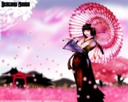 Sengoku Musou Wallpaper