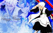 Toshiro Hitsugaya Wallpaper