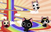 Nyanpire the Animation Wallpaper
